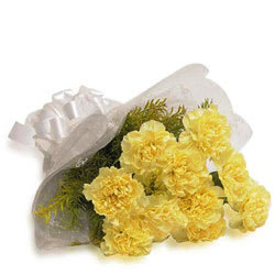Beautiful Bunch of Carnations of Yellow Colour