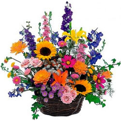 Multi-Colored Seasonal Flower Basket With Fillers