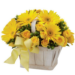 Thriving Togetherness Roses and Gerberas Arrangement