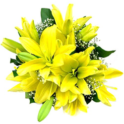 Joyful Anniversary Bouquet of Yellow Lilies