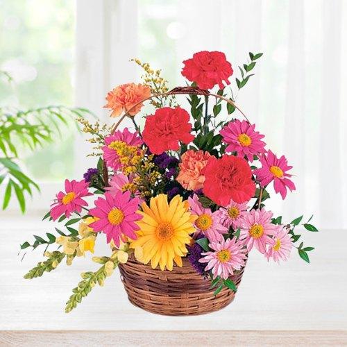 Impressive Carnations & Gerberas Basket