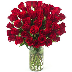 Artful Display of Two Doz Red Roses in a Glass Vase