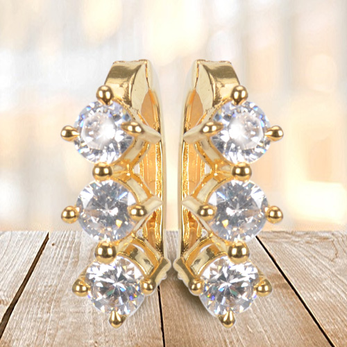 Enticing AD Earrings