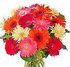 Send Fresh Flowers to Putaparthy
