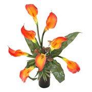 Long Lasting – Classic Cala Lilies