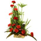 Classic One Dozen Carnations Celebration Bouquet
