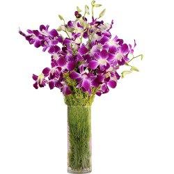 Resplendent fresh humper Orchids in a Vase