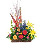 Multicolored Seasonal Flowers Arrangement of Good Wishes to Lallaguda