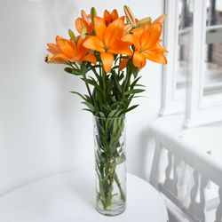 Fashionable Vase Filled with 6 Pcs. Mixed Lilies to Housing Board Colony