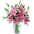Expressive Lilies in Pink Color with Vase to Putlii Bowli