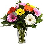 A Glass Vase full of MIxed Gerberas to Bus Station
