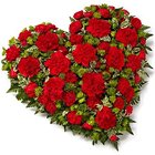 Scintillating 24 Red Carnations in Heart Shape to Ramkote