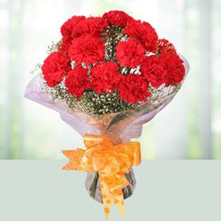 Designed Presentation of Red Carnations