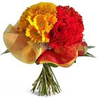 Stimulated Charisma Gerberas Special Bouquet