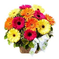 Wonderful Basket Arrangement of 150 Assorted Gerberas