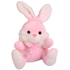 Cute Rabbit Soft Toy to Krishna