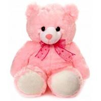 Soft Teddy for Birthday Gift