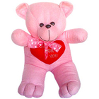 Snuggle Teddy Bear with passion