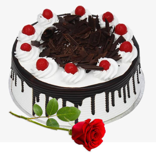 Online Deliver Eggless Black Forest Cake with Single Rose