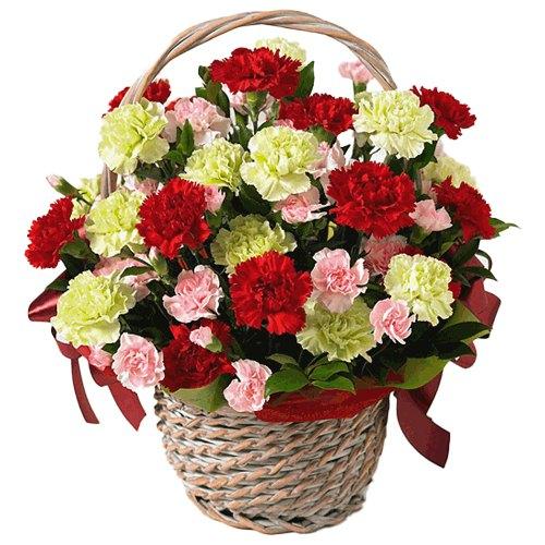 Deliver Basket of Assorted Carnation Online