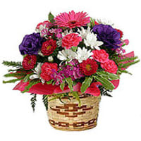 Buy Mixed Flowers in a Bamboo Pot Online