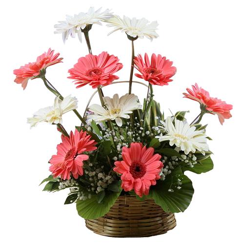 Order Online Bouquet of Assorted Gerberas