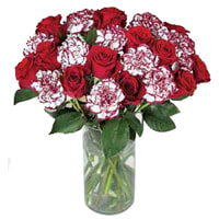 Order Bunch of Roses N Carnation Online