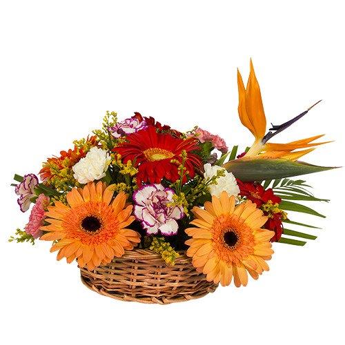 Online Order Carnation N Gerberas Basket
