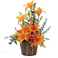 Order Online Bouquet Of Lilies