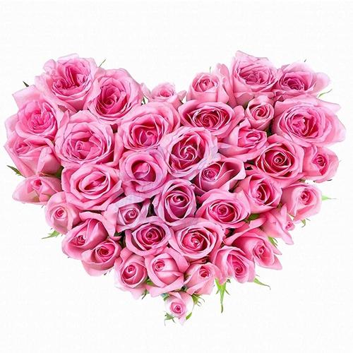 Send Heart Shape Pink Roses Arrangement for Propose Day