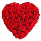 150 Dutch Red Roses in Heart Shape Arrangement
