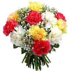 Buy Bunch of Mixed Carnations Online