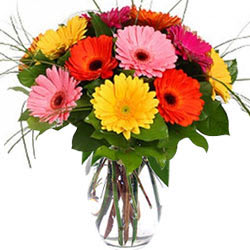 Book Mix Gerberas in a Glass Vase Online