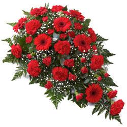 Flat Arrangement of 24 Red Flowers