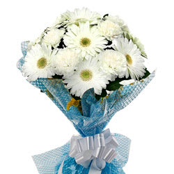Deliver White Gerberas Bouquet Online