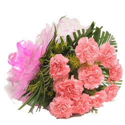 Buy Bundle of Pink Carnations Online