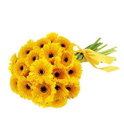 Online Order Bunch of Yellow Gerberas