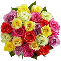 Book Assortment of Mixed Roses<br>Online