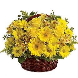 Shop Yellow Flowers Basket Online