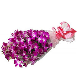Buy Bunch of Orchids Online