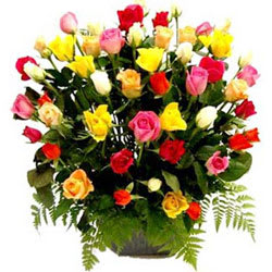 Buy Mixed Roses Basket Online