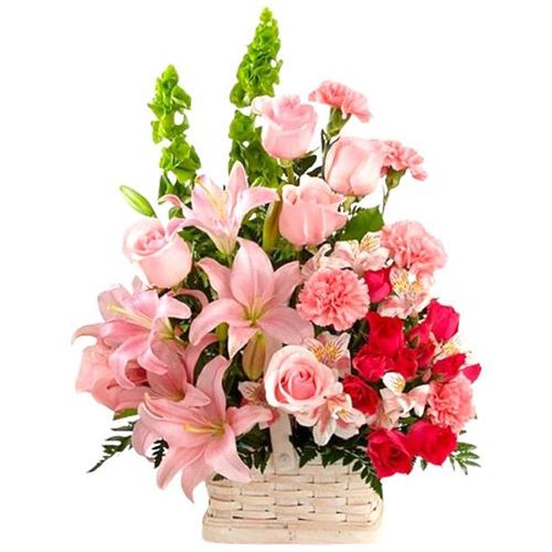 Book Arranged Seasonal Flowers Online