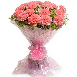 Send Pink Carnations Bouquet Online