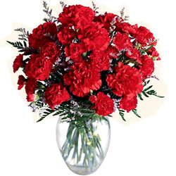 Online Deliver Red Carnations in a Vase