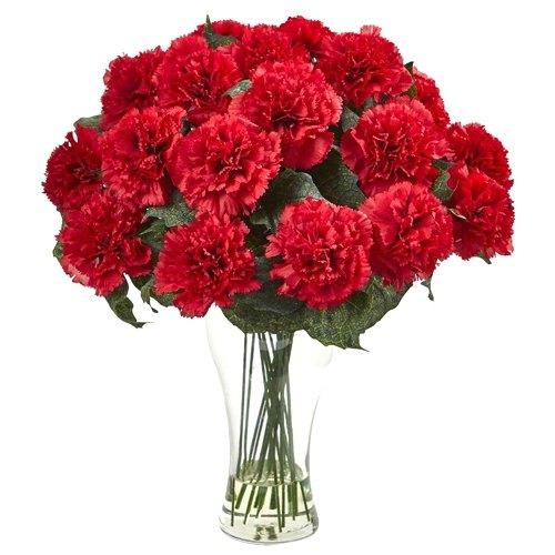Online Deliver Red Carnations in a Vase