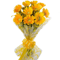Deliver Yellow Gerberas Bouquet Online