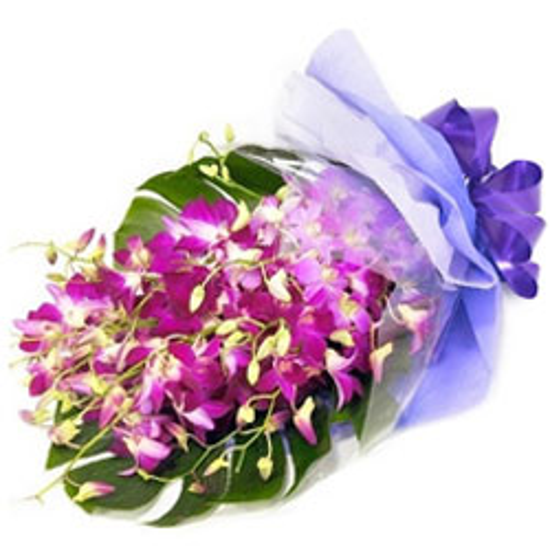 Send Orchids Bouquet Online